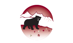 Oso Negro Coffee